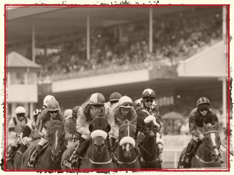 Galway Horse Races